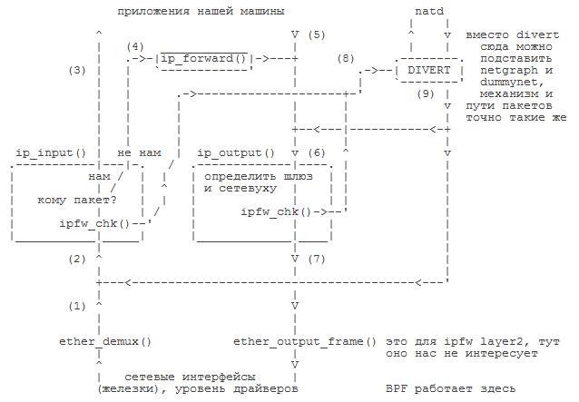 IPFW: порядок прохождения пакетов, сложные случаи [2008